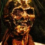 Lucio Fulci\'s Zombie